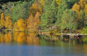 sweden-76919_1280